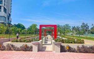 eLanka   Urban Forest Park in Colombo City – symmetrical manifestation By Arundathie Abeysinghe