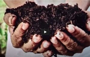 Organic Fertilizers -Agricultural Revolution in Sri Lanka-by Dr Harold Gunatillake